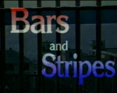 Bars and Stripes: Doing Time in the Prison Complex